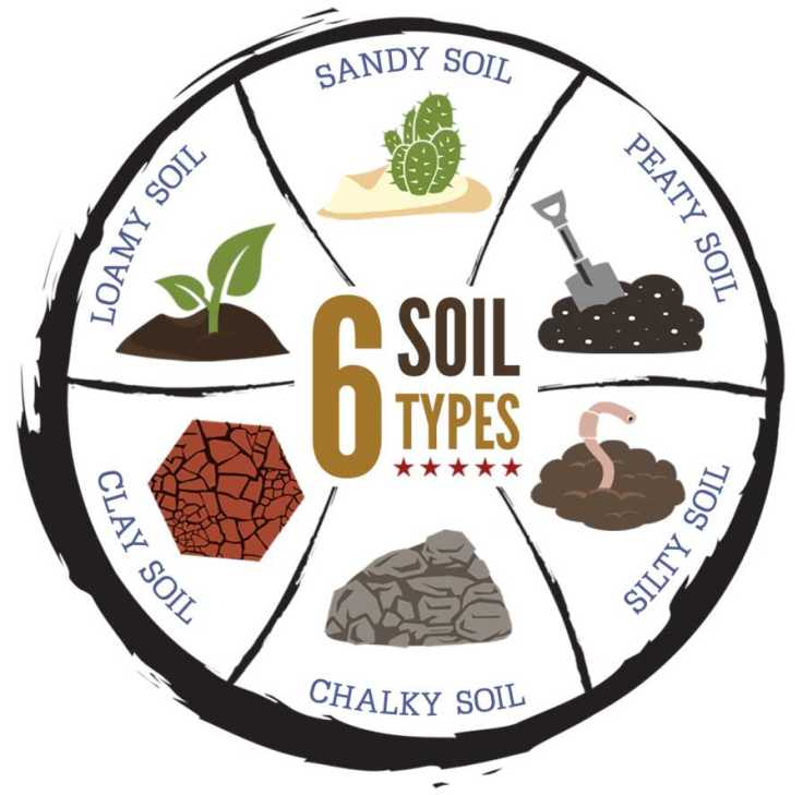 6 Soil types infographic